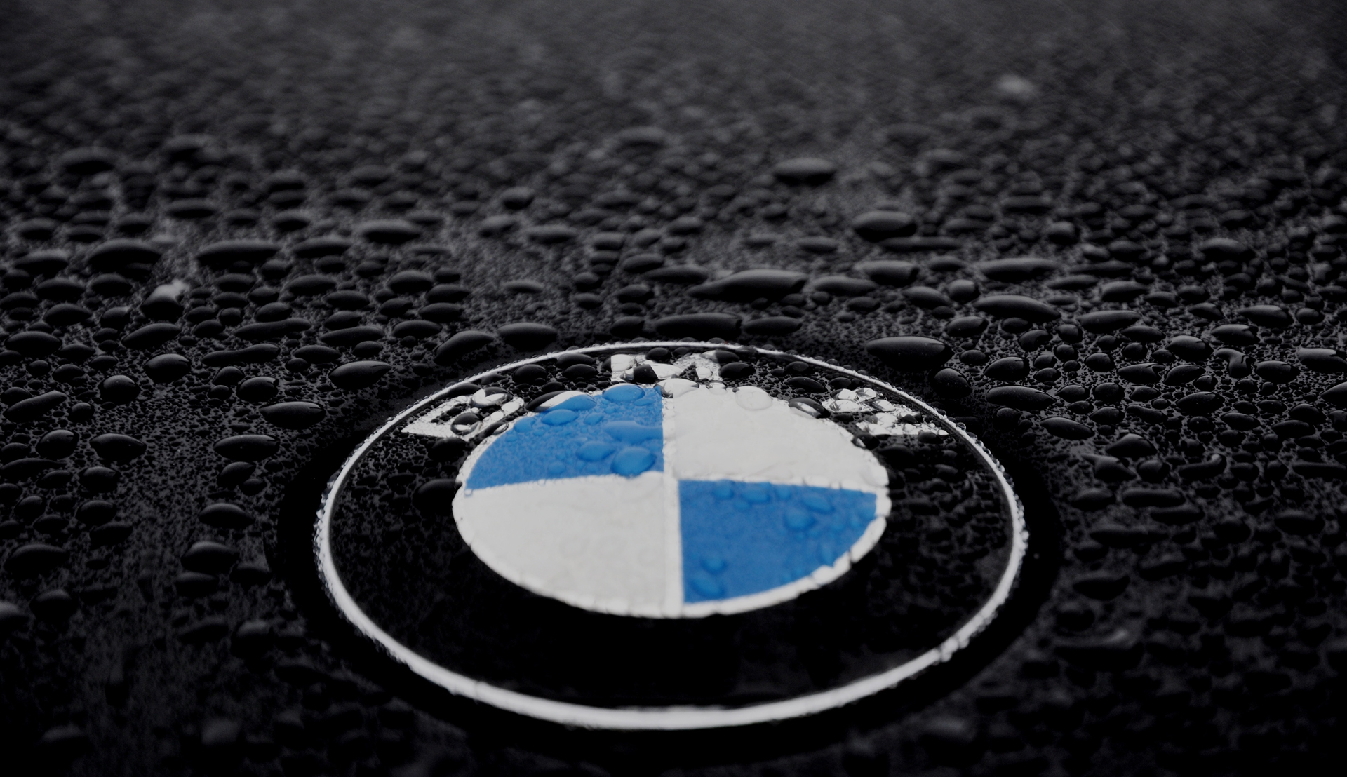 bmw logo desktop hd wallpaper 58882