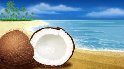Coconut Beach Art Wallpaper 58716