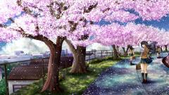Anime Sakura Trees Wallpaper 51330