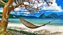 Beach Hammock Desktop Wallpaper 49213
