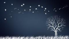 Creative Tree Wallpaper 50650