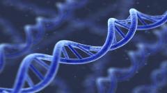 Genetic DNA Computer Wallpaper 50092