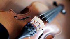 Violin Instrument Wallpaper 49005