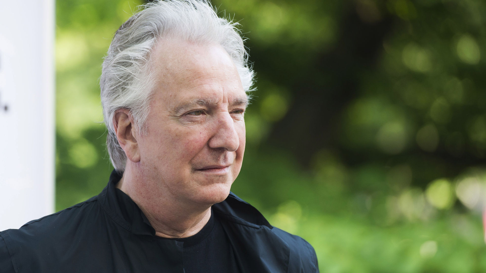 alan rickman desktop wallpaper 58112
