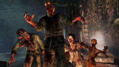 Call Of Duty Zombies Widescreen Wallpaper 52278