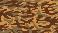 Camouflage Widescreen Wallpaper 49436