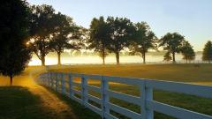Farm Fence Desktop Wallpaper 50434