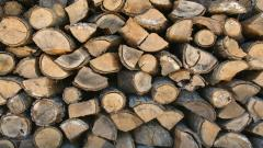Firewood Logs Wallpaper 49354