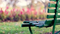 Green Bench Desktop Wallpaper 49056