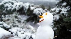 Mini Food Snowman Wallpaper 49409