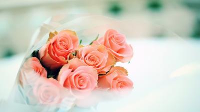 Rose Flower Bouquet Computer Wallpaper 52249