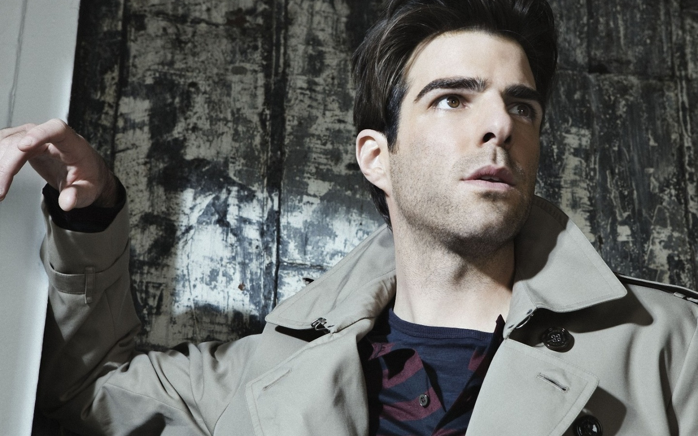 zachary quinto wallpaper 56427