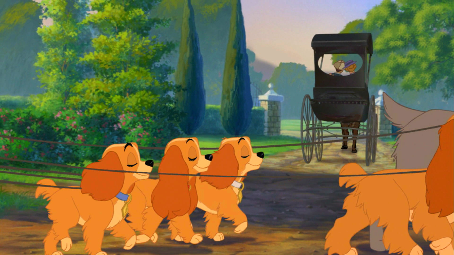 lady and the tramp download