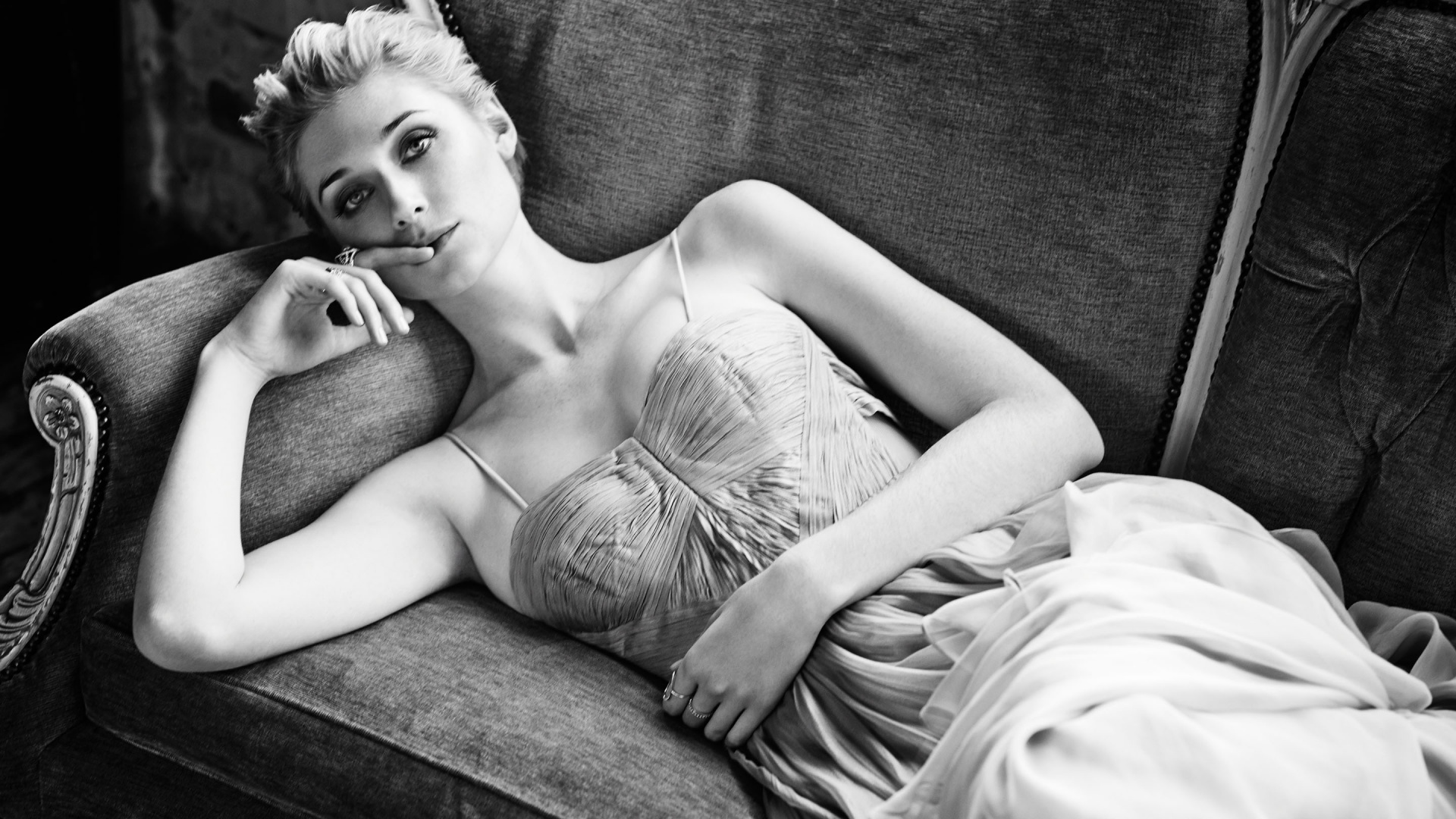 monochrome elizabeth debicki wallpaper 56820