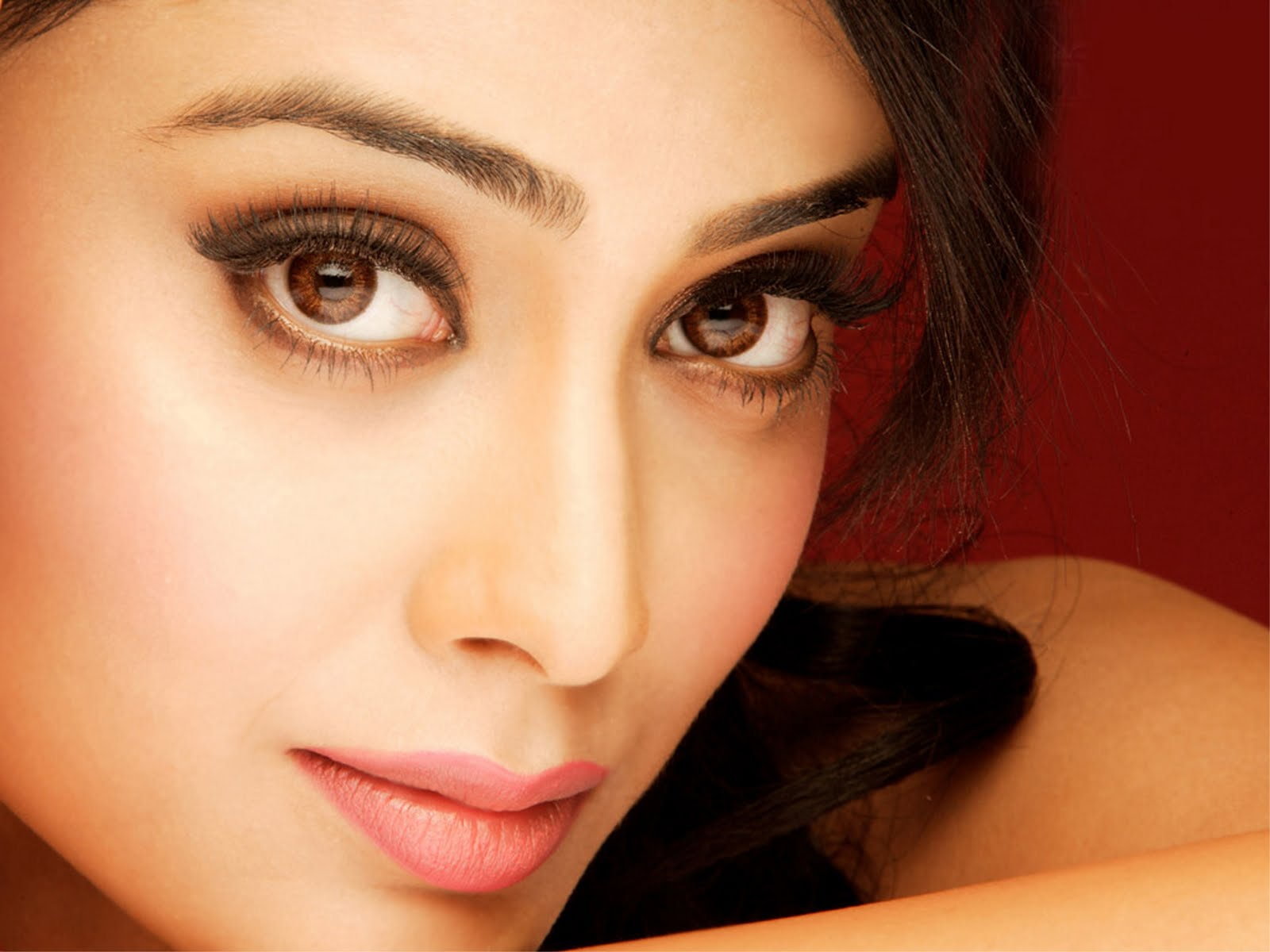 shriya saran face hd wallpaper 53931 1600x1200px