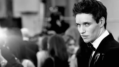 Eddie Redmayne Celebrity Wallpaper 56798