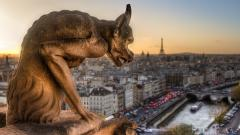 Gargoyle Statue Wallpaper HD 49656