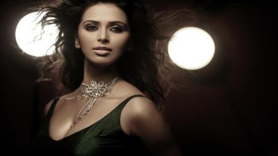 Hot Meenakshi Dixit Wide Wallpaper 55466