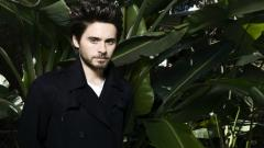 Jared Leto Widescreen Wallpaper HD 50877