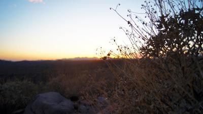 Saguaro Lake Sunset Bokeh 51684