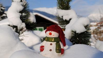 Snowman Desktop Photography Wallpaper 52524
