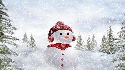 Snowman Wallpaper 52523