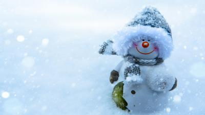 Snowman Widescreen Wallpaper 52518