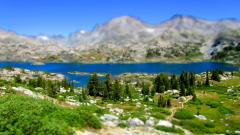 Tilt Shift Nature Wallpaper Background 50083