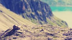 Tilt Shift Photography Wallpaper 50080