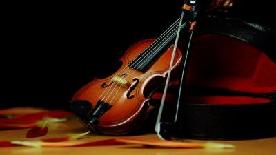 Violin Computer Wallpaper 58797