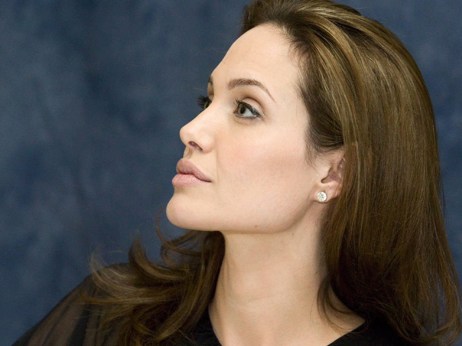 angelina jolie computer wallpaper 50324