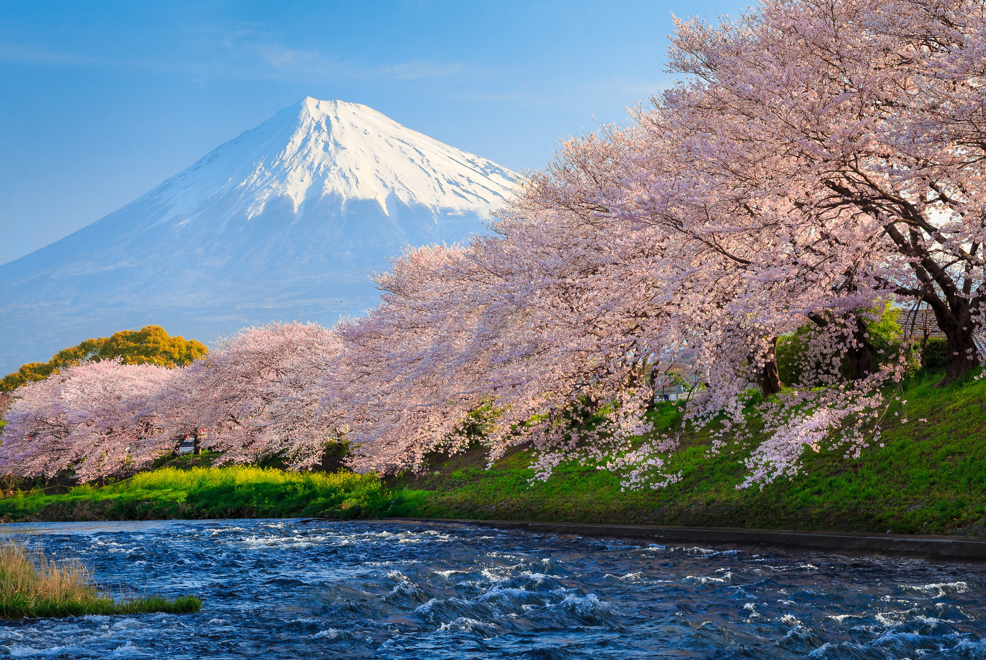 Mt Fuji Desktop Hd Wallpaper 51287 1920x1285px