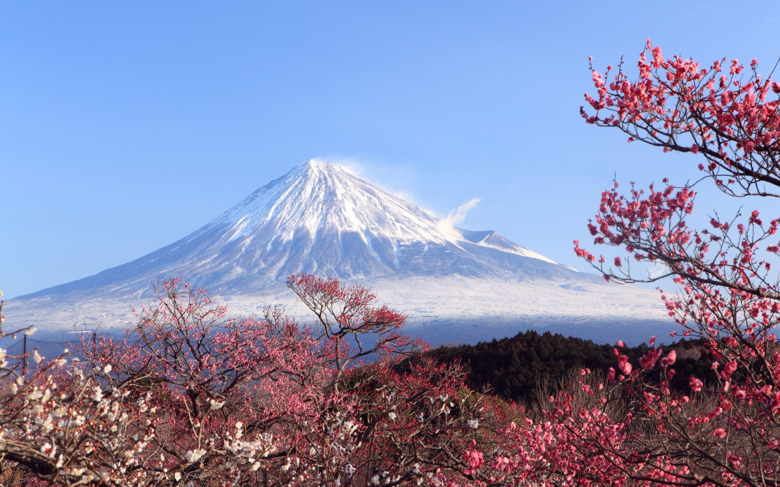 mt fuji japan wide wallpaper 51289
