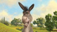 Shrek Donkey Wallpaper 51305