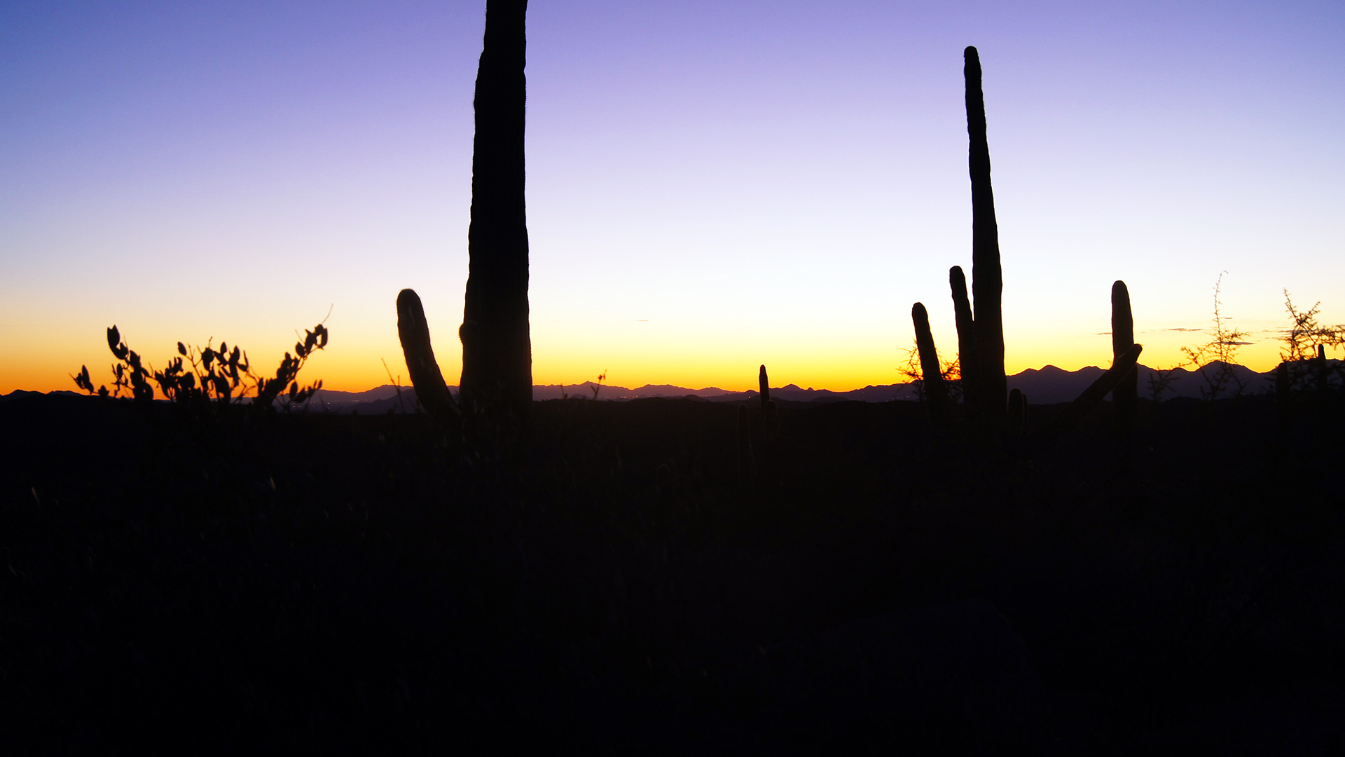 arizona four peaks sunset
