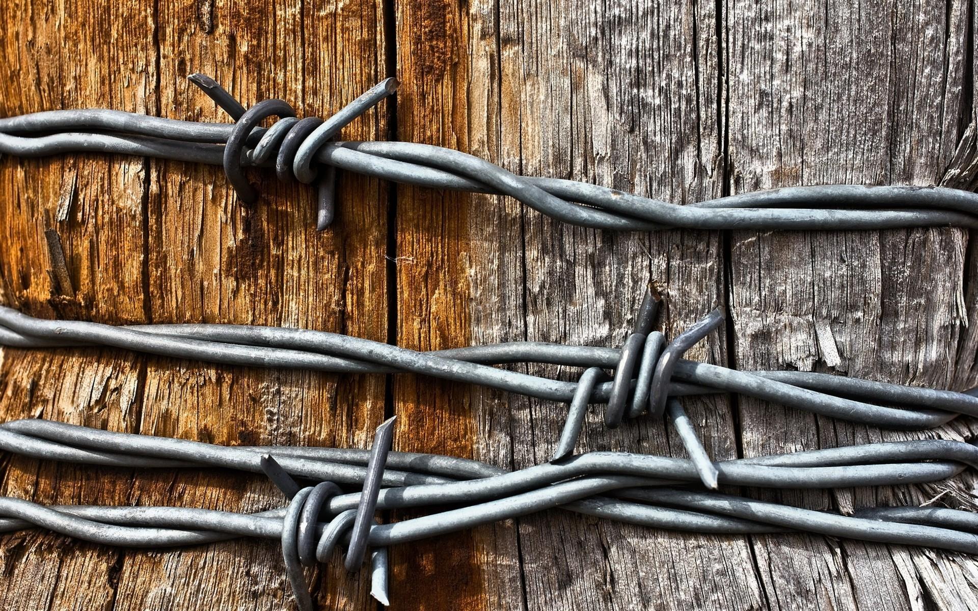 barb wire wallpaper 54315