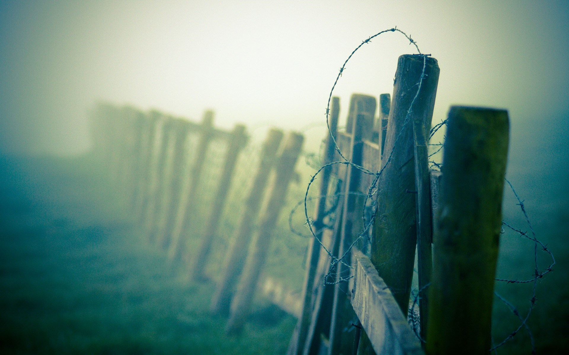 barbed wire fence wallpaper 54321