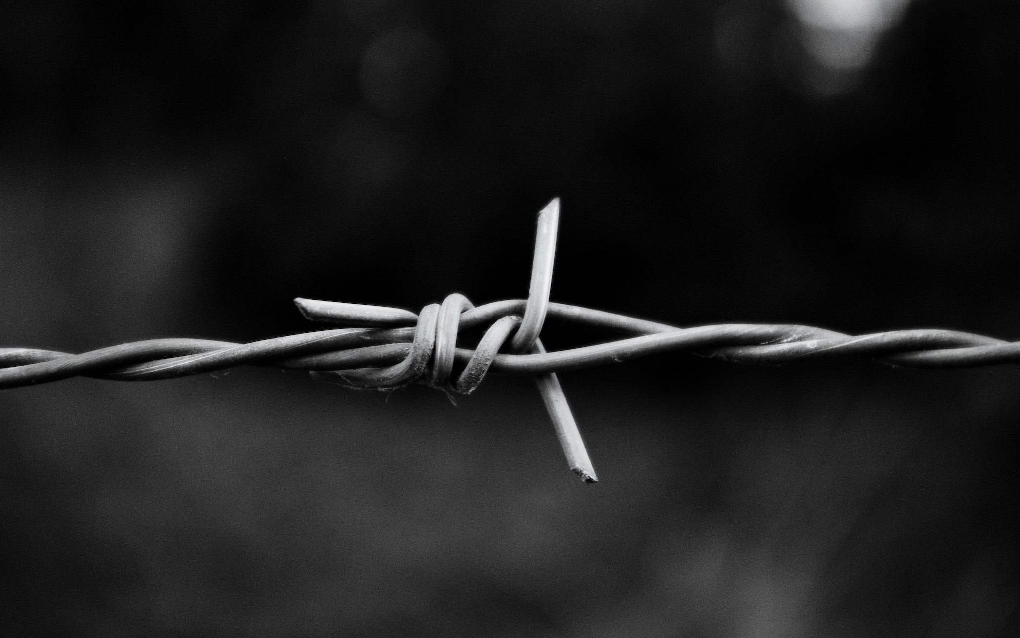 monochrome barb wire wallpaper 54327