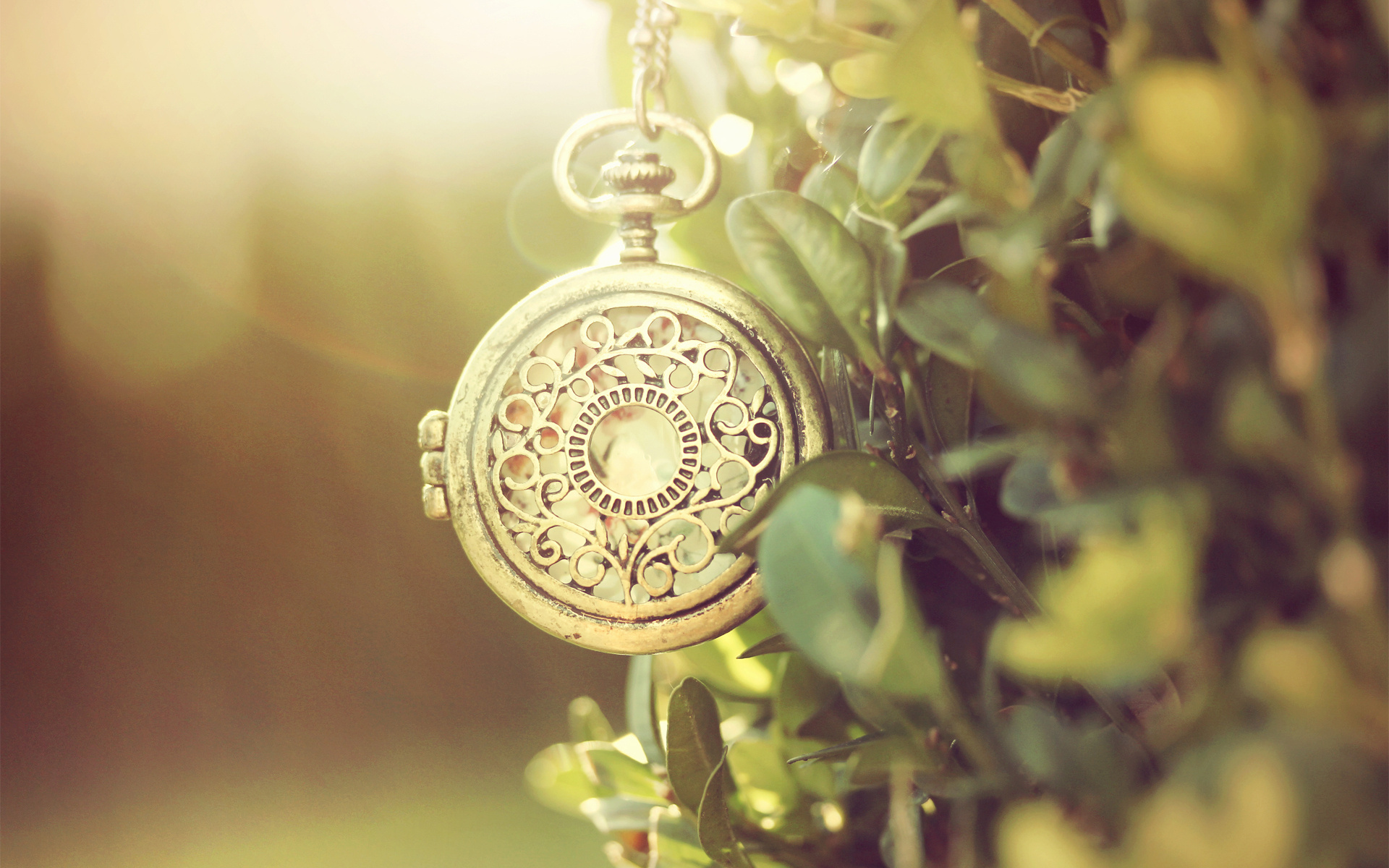Pocket watch wallpaper  Pocket Watch Macro Wallpaper 49502 1920x1200 px ~ HDWallSource.com