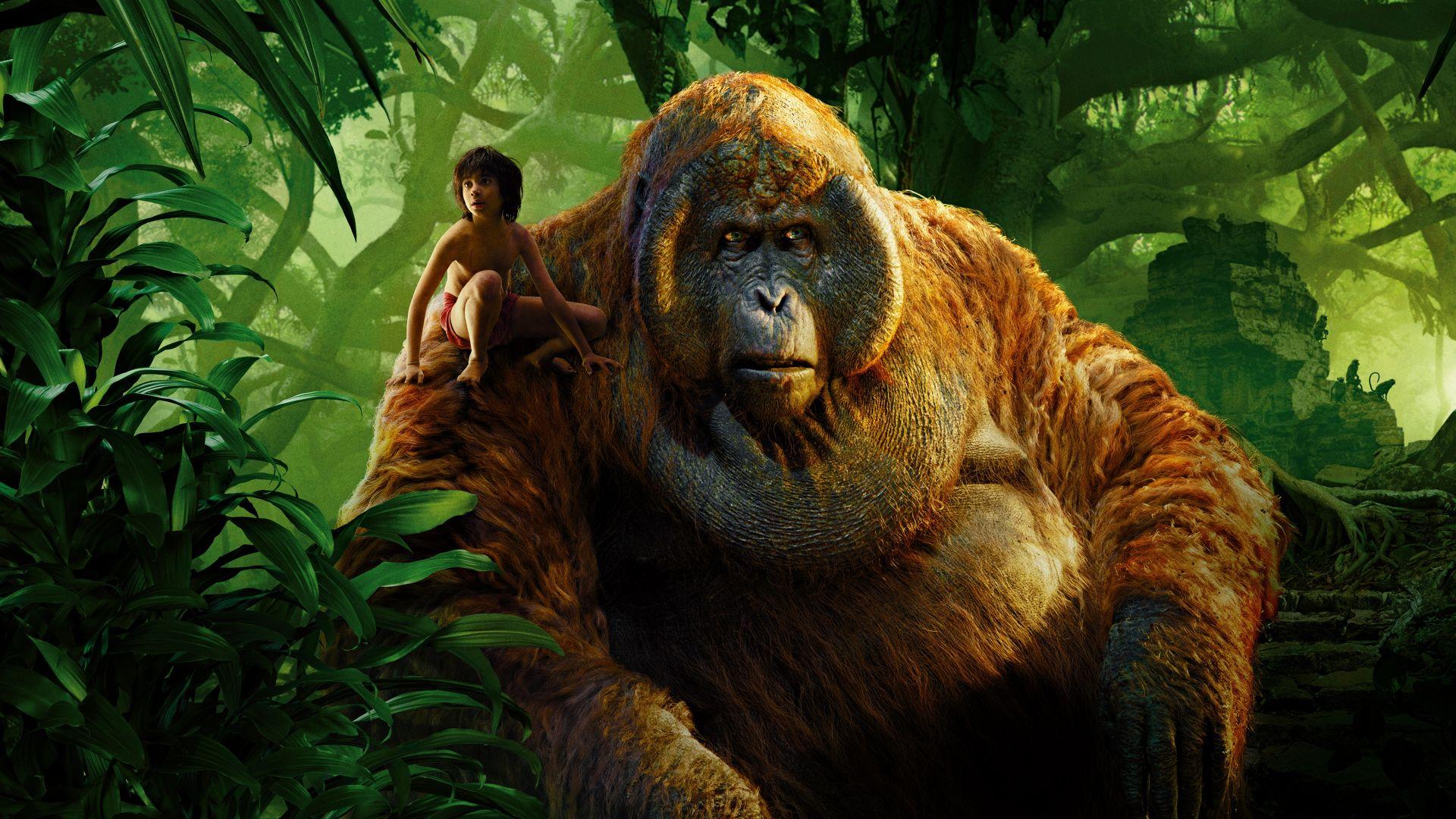 the jungle book movie desktop wallpaper 51835