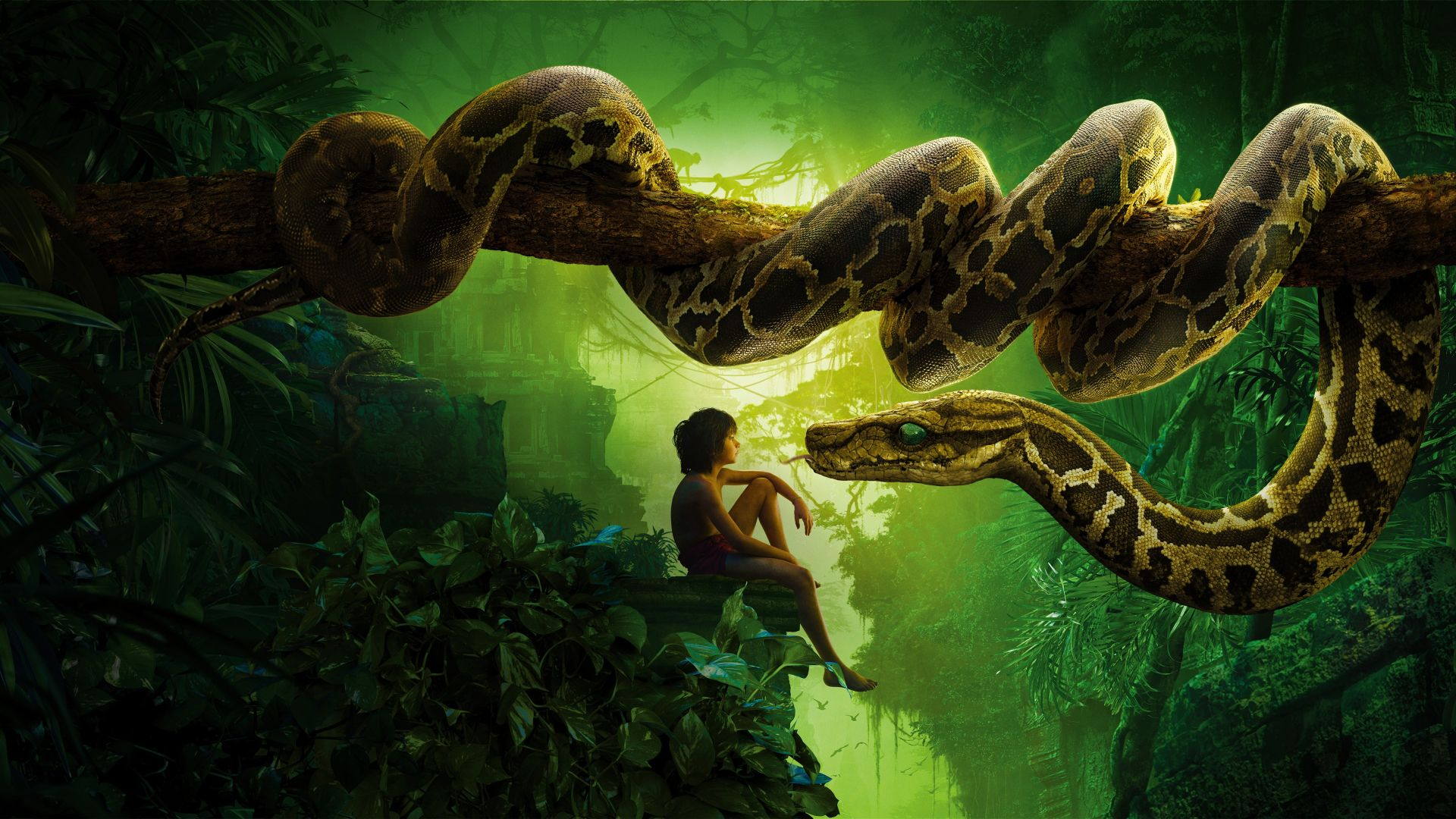 the jungle book movie desktop wallpaper 51836