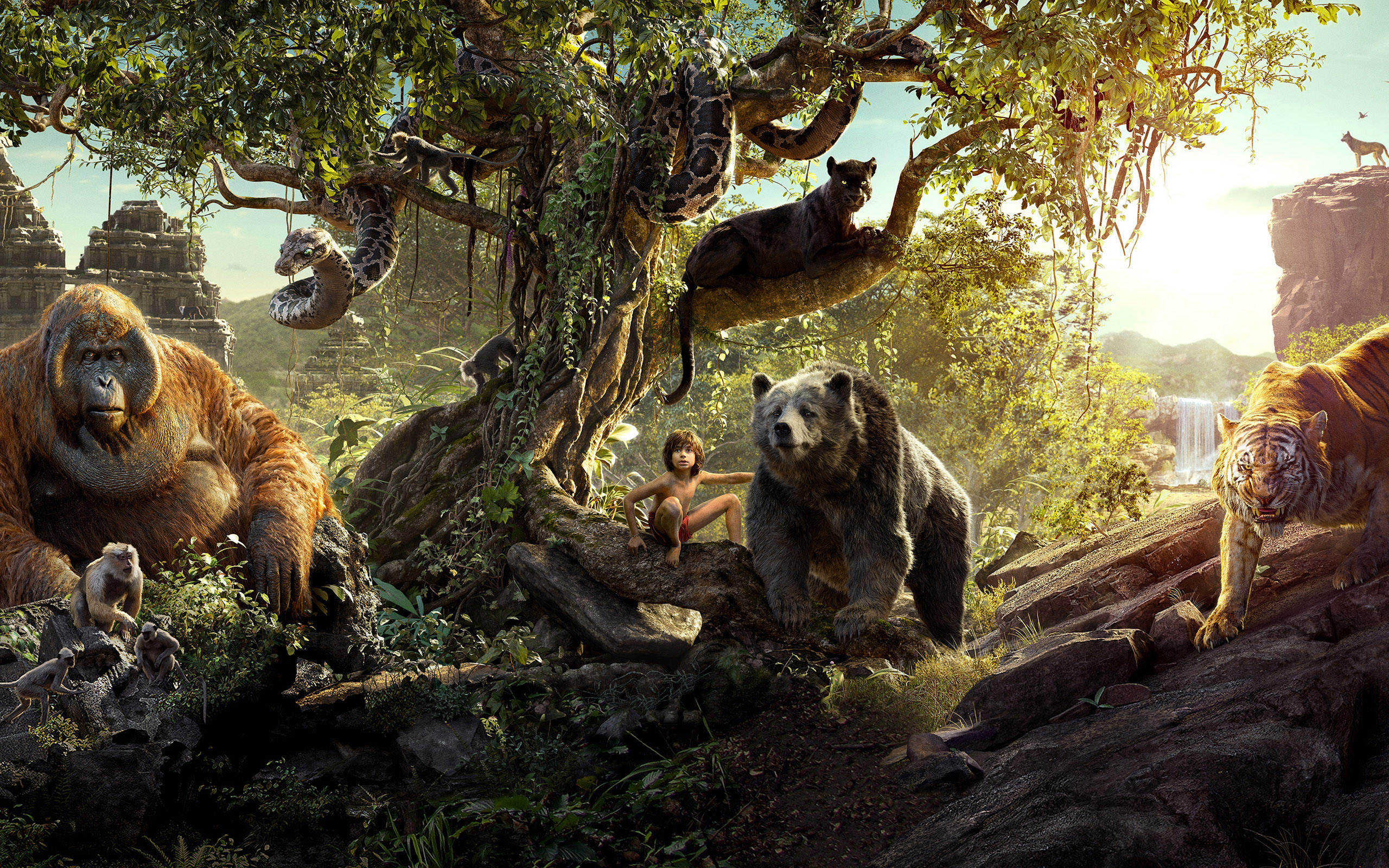the jungle book movie wallpaper background 51833