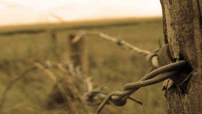 Barb Wire Computer Wallpaper 54318
