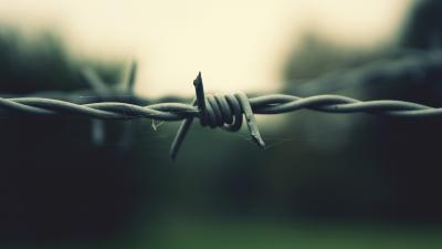 Barb Wire Desktop HD Wallpaper 54323