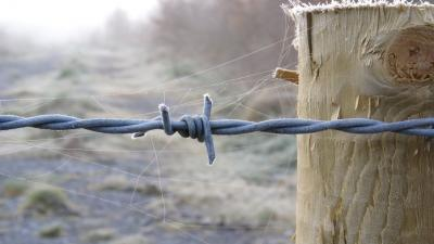 Barb Wire Desktop Wallpaper 54317