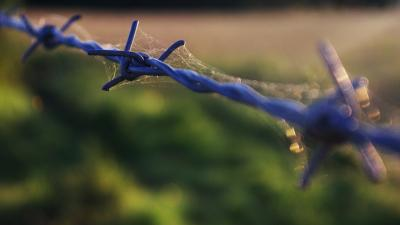 Barb Wire Photography Wallpaper 54316