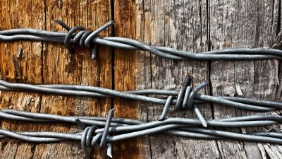Barb Wire Wallpaper 54315