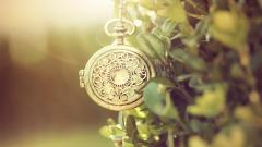 Pocket Watch Macro Wallpaper 49502