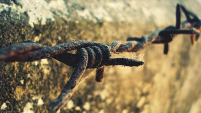Rusty Barb Wire Wallpaper 54325
