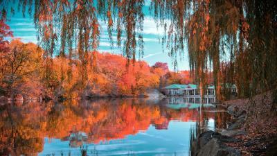 Autumn Central Park Widescreen Wallpaper 60568